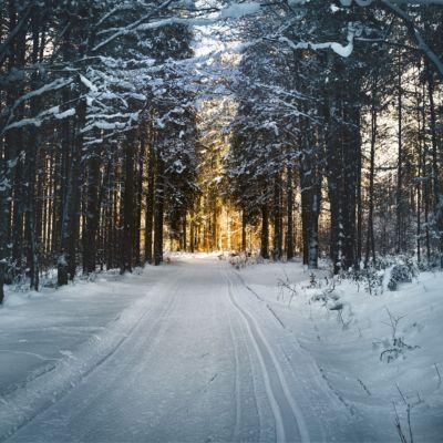 cross-country-skiing-2065439_1920-2
